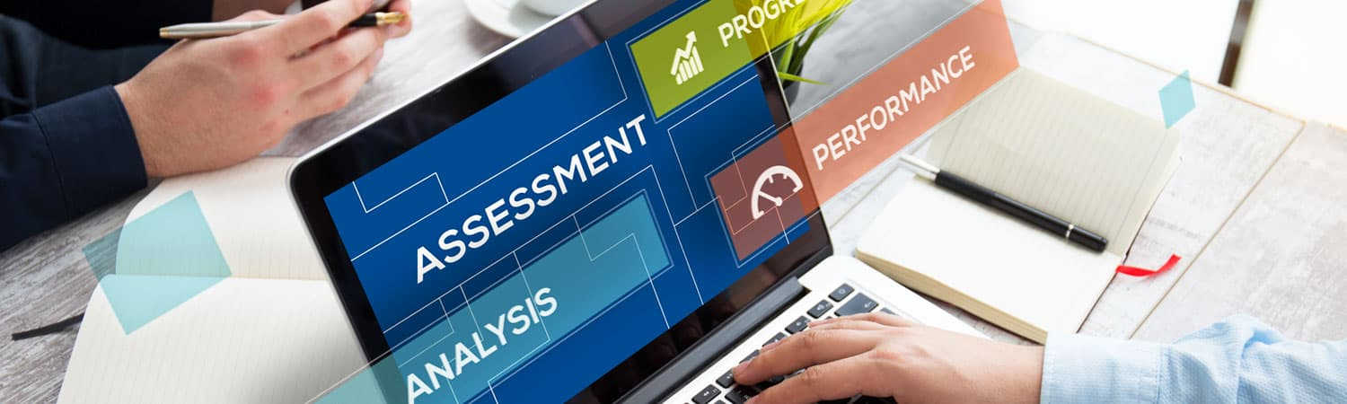 IT Assessment within the SME sector